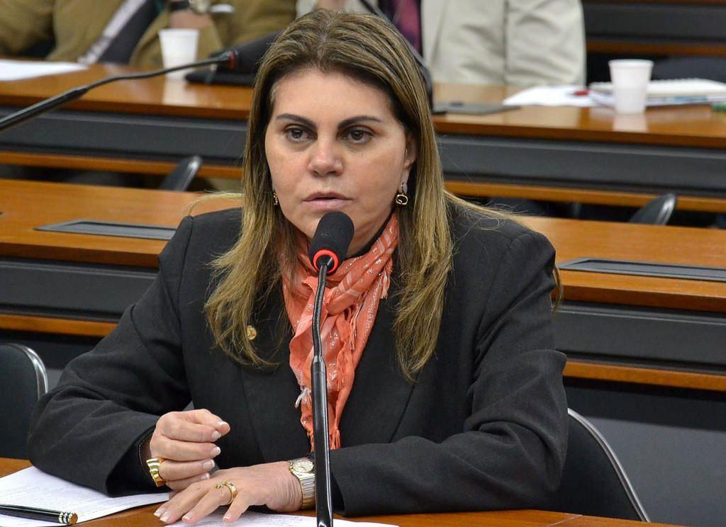 Sueli Vidigal se despede da Câmara dos Deputados para conduzir a Secretaria Estadual de Assistência Social. Foto: Divulgação Ales