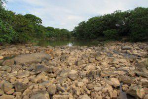Na última segunda - feira (09) quase toda a água do rio Santa Maria ficava retida na captação, restando pouco para alimentar os manguezais da baía de Vitória. Foto: Fábio Barcelos