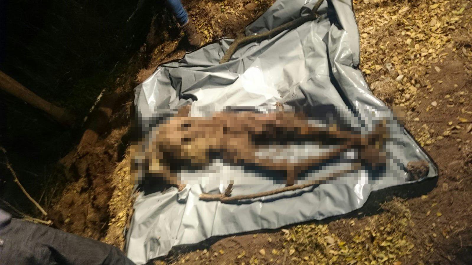 O corpo está no estado de decomposição avançado. Foto: Divulgação