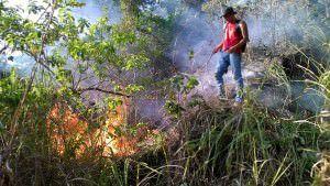 O ativista Edson Reis combatendo fogo no morro do Vilante. Foto: Divulgação