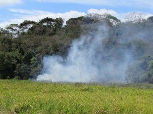 Incêndio nas matas do entorno do sítio histórico de São João de Carapina. Foto: Arquivo TN / Bruno Lyra