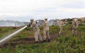 Em fevereiro o combate chegou a mobilizar mais de 100 homens simultaneamente, entre Bombeiros, Defesa Civil e brigadistas de empresas. Foto: Arquivo TN / Bruno Lyra