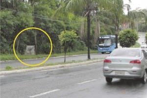 O portão de acesso a um dos terrenos invadidos fica numa curva e a entrada de veículos gera risco de acidente. Foto: Fábio Barcelos