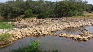 Rio Santa Maria na captação da Cesan no Queimado, Serra: pouca água. Foto: Arquivo TN/Bruno Lyra/Março 2015