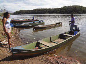 Profissionais da Juara enfrentaram recentemente grande mortandade de tilápia e um dos motivos, pode ter sido o estresse do peixe pela sobrepesca. Foto: Arquivo TN Clarice Poltronieri