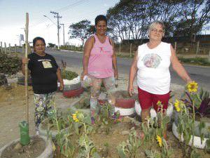 Os moradores plantaram girassóis e árvores, inclusive frutíferas. Foto: Fábio Barcelos