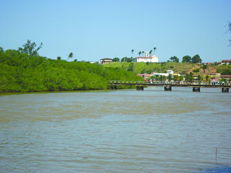 Mais de 500 hectares de mangue sob ameaça em Nova Almeida