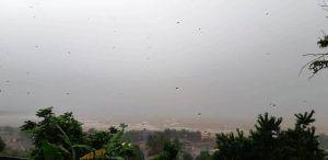 Chuva forte deixa casas e ruas alagadas em diversos bairros da cidade