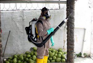 Estado está sem inseticida para combater a dengue