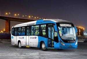 Ônibus do Transcol com ar-condicionado começam a circular neste mês