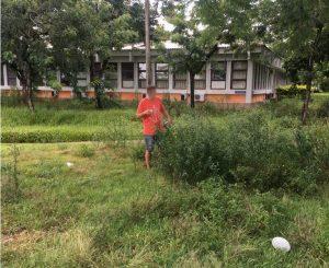 Matagal, sujeira e calor: Ufes anuncia medidas de emergência após cortes de Bolsonaro